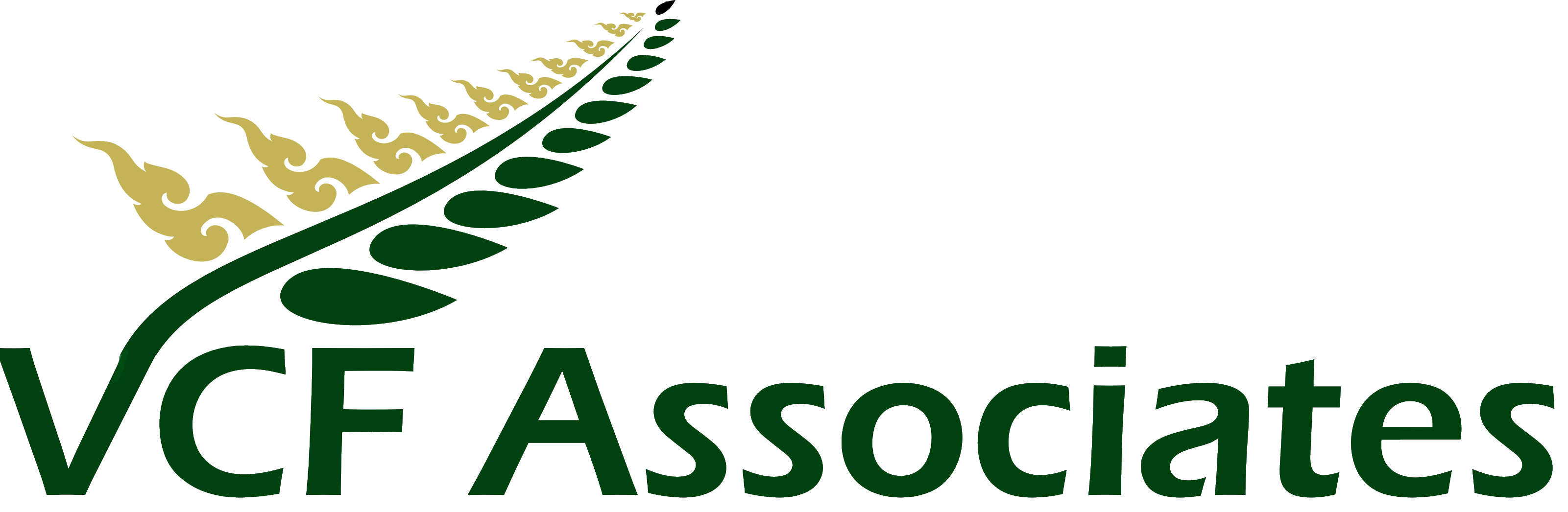 VCF Associates NZ